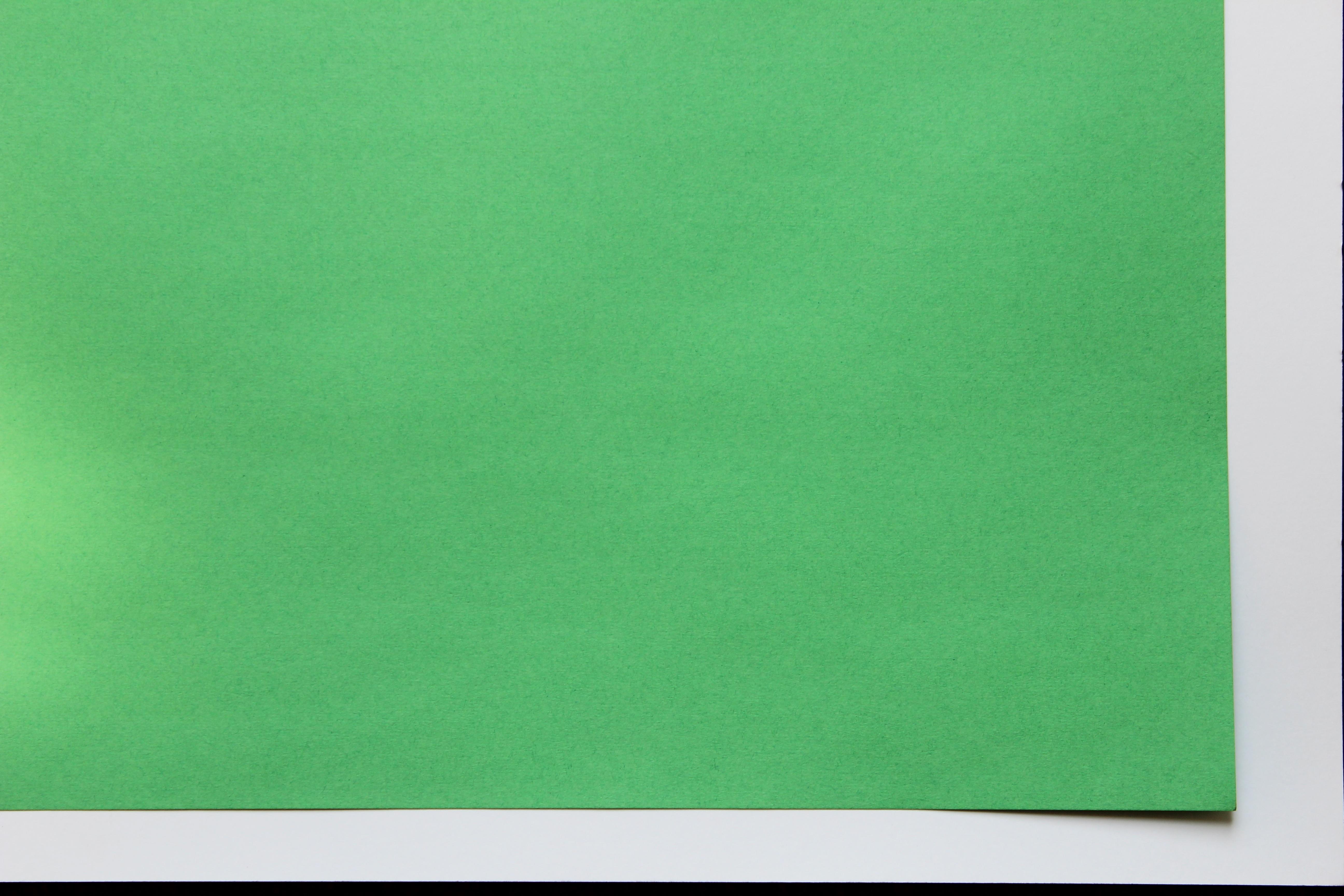 """0222 125 2 Ply Green Deluxe Bristol Board - 22"""" x 28"""""""